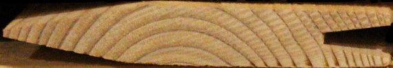 querschnitt einer schindel aus lärchenholz