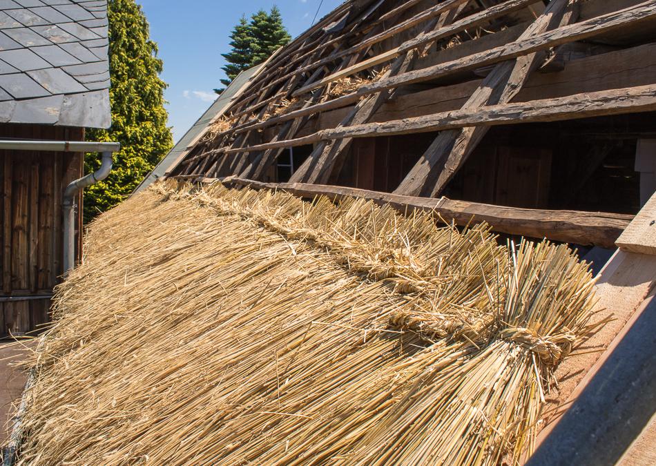strohdach decken - erste reihe, offener dachstuhl
